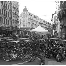 bxl heart loves bikes bicycle