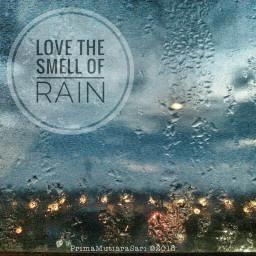 bokeh photography rain rainyday