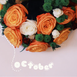 flowers october octoberphotoaday hellooctober october2016