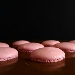 food photography macarons sweet cakepuntcom