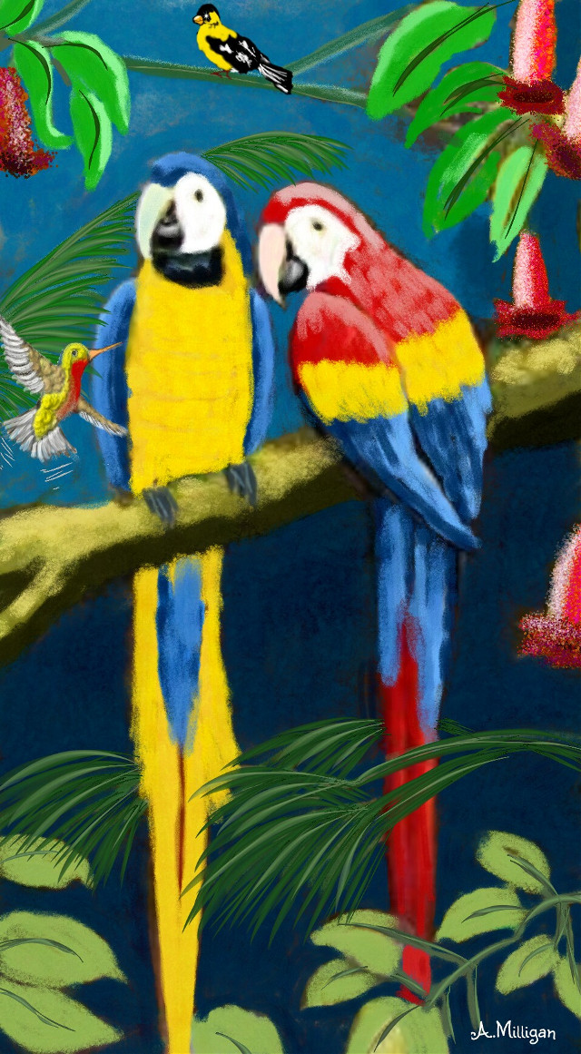 """#wdpprimarycolors  """"Primary birds""""   #colorful  #colorsplash  #blue  #red  #yellow  #birds  #parrots  #trees  #petsandanimals  #draw 😊💚❤🦃🐦"""