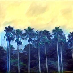 freetoedit palmtrees