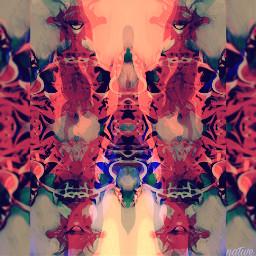 safari reflection mirrored art edited