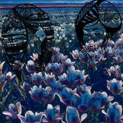 night nightlife beautyofnature beautyoftulips tulips