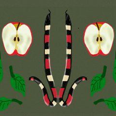 drawing apple snake halves wdphalves