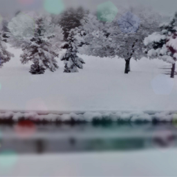 dpctrees freetoedit trees winter winterwonderland